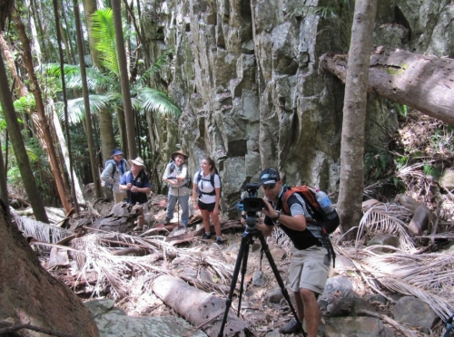 The Great South East film crew join Horizon Guides on a guided bush walk.