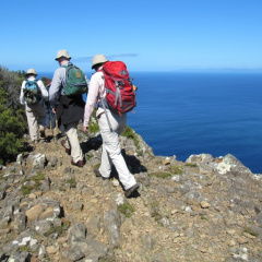 Tassie Tracks: Mt Field to the Blue Tier #2 May 2021