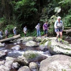 Horizon Guides Day Walks 2017